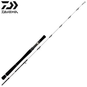 CANNE JIG DAIWA POWERMESH CASTING 66XH